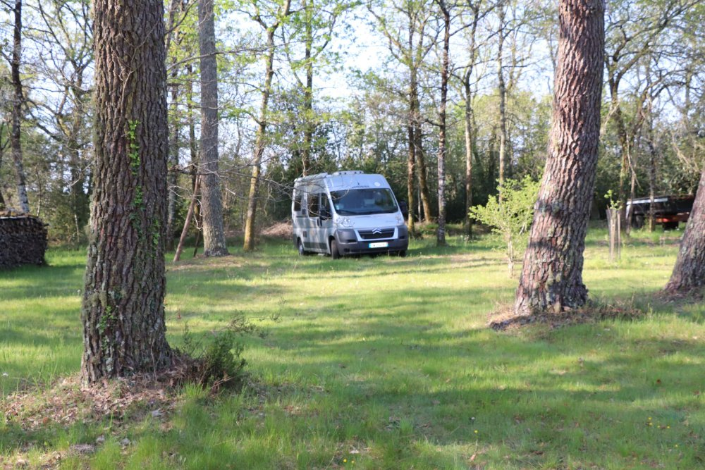 Aire camping-car à Saint-Symphorien (33113) - Photo 3